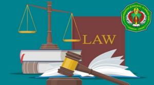 19 hukum